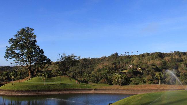 Canyon-Wood-Golf
